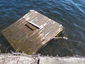 dock_rescue1