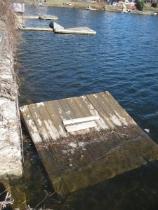 dock_rescue4
