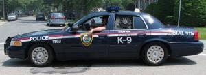 wakefield_police_cruiser